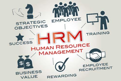 Pelatihan Human Resources Management Murah