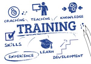 Training Train The Trainers Program