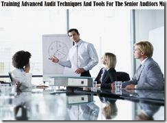 training memprioritaskan dan mengukur resiko audit murah