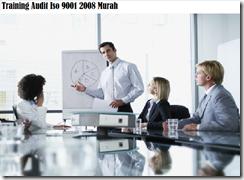 training mengetahui cara melaksanakan internal audit murah