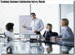training teknik dan metodologi survey murah