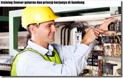 pelatihan BASIC MACHINERY VIBRATION di bandung